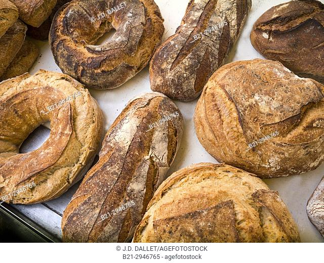 France, Auvergne,Cantal,Food,  land breads..