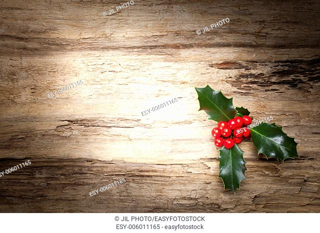 Christmas holly on wooden background