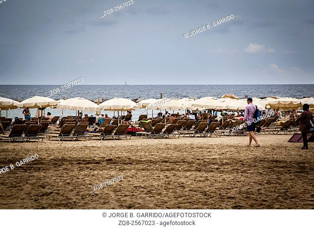 Sun loungers and straw shade umbrellas on a beach by the Mediterranean Sea