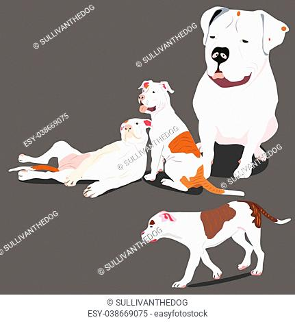 a vector illustration of american bulldog puppies and their mother in different positions