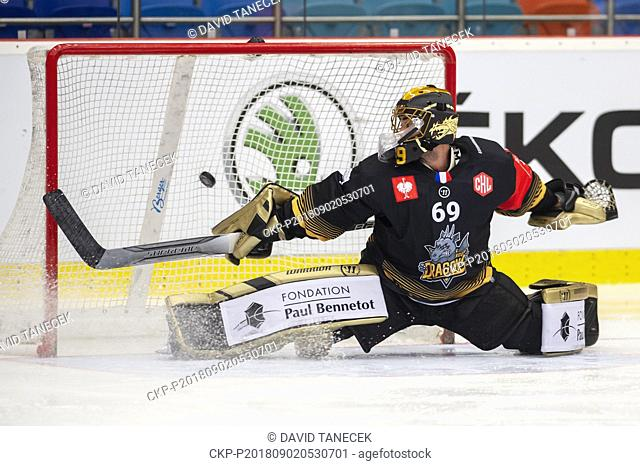 Hockey player, goalie MATIJA PINTARIC of Rouen receives a goal during the Ice hockey Champions League matches group F Mountfield Hradec Kralove vs