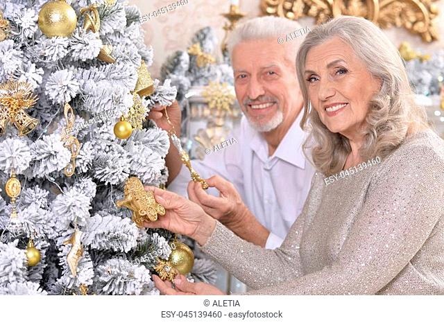Portrait of elegant elderly couple near christmas tree