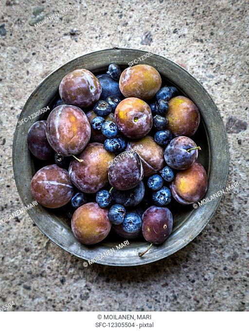 Plums and blueberries in metal bowl