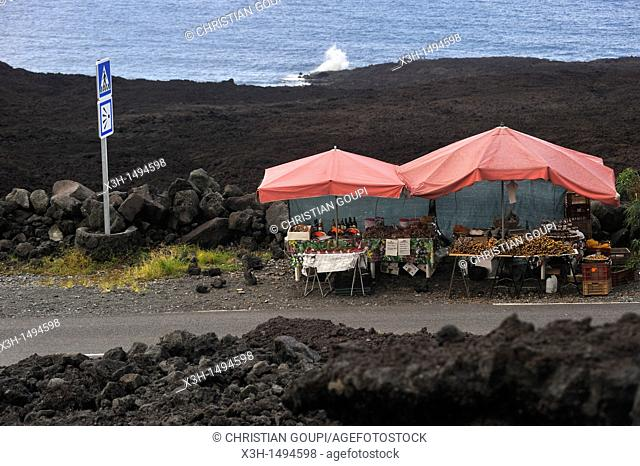 local products seller on the side of the road on the coast named 'Le Grand Brule' on the Southeast part of Reunion island, overseas departement of France