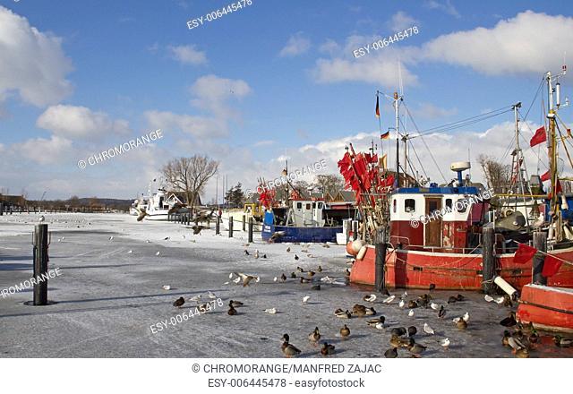Winter in Niendorf Harbour, Timmendorfer beach, Schleswig-Holstein