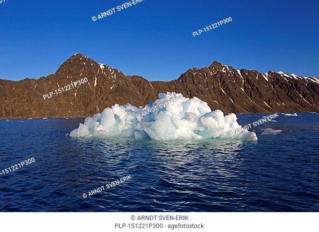 Ice floe calved from the Lilliehöökbreen glacier drifting in the Lilliehöökfjorden, fjord branch of Krossfjorden in Albert I Land, Spitsbergen, Svalbard, Norway