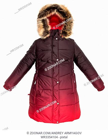 Women winter jacket isolated on white background