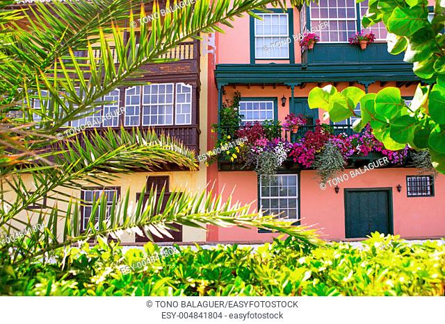 Santa Cruz de La Palma colonial flowers house facades in canary Islands