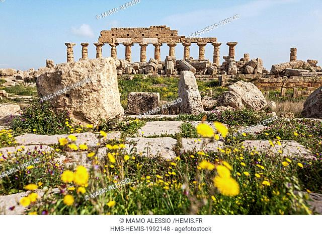 Italy, Sicily, Selinunte, the archaeological park of the ancient greek city, the ruins of the A - temple with C - temple on the back