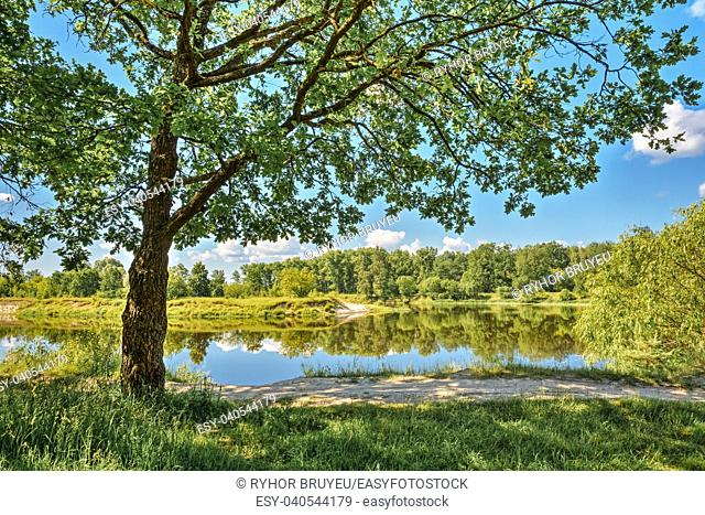 Gomel, Belarus. River Landscape With Green Forest Woods On Coast And Reflections Of Trees In Water. Summer Sunny Day. Blue Sky. Nobody