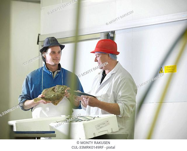 Workers holding mackerel and turbot