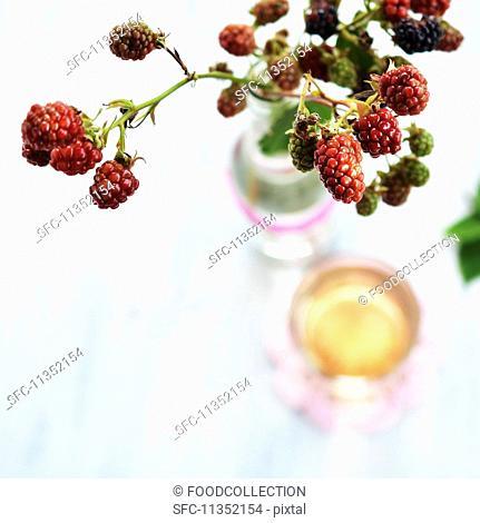 A sprig of unripe blackberries in a glass bottle