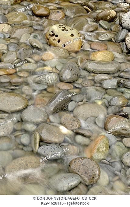 Polished rocks in a small creek crossing Beach 4 at low tide  Olympic NP, Washington