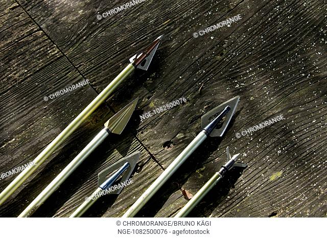 miscellaneous carbon steel arrowheads on timber