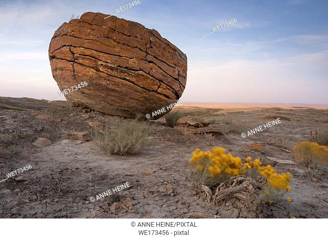 Massive red rock of ironstone lying in the prairie like fallen from the sky. Red Rock Coulee Natural Area. Southern Alberta, south of Medicine Hat, Alberta