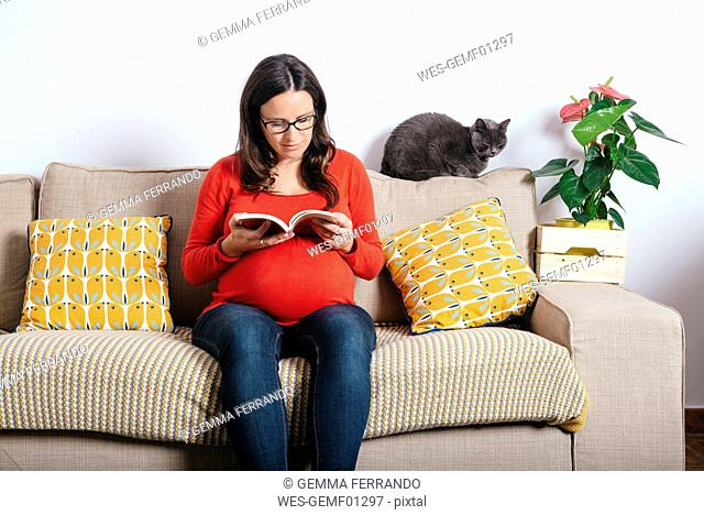 Pregnant woman with cat reading a book on the couch