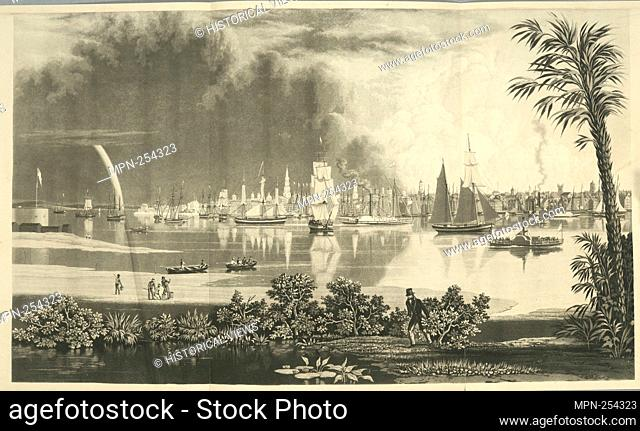 City of Charleston S. Carolina looking across Cooper's River. Emmet Collection of Manuscripts Etc. Relating to American History