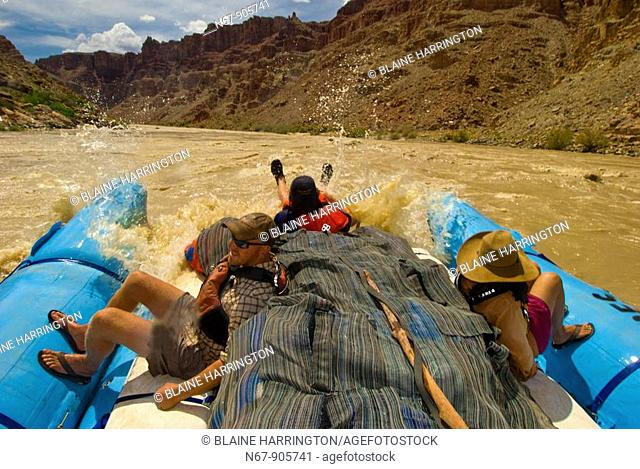 A Wilderness River Adventures motorized pontoon rafting through whitewater rapids, Cataract Canyon, the Colorado River in Canyonlands National Park, Utah, USA