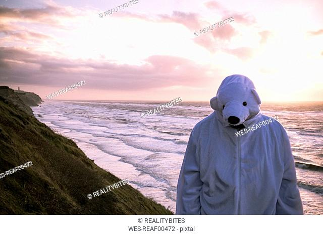 Denmark, Nordjuetland, Man wearing ice bear costume at the beach