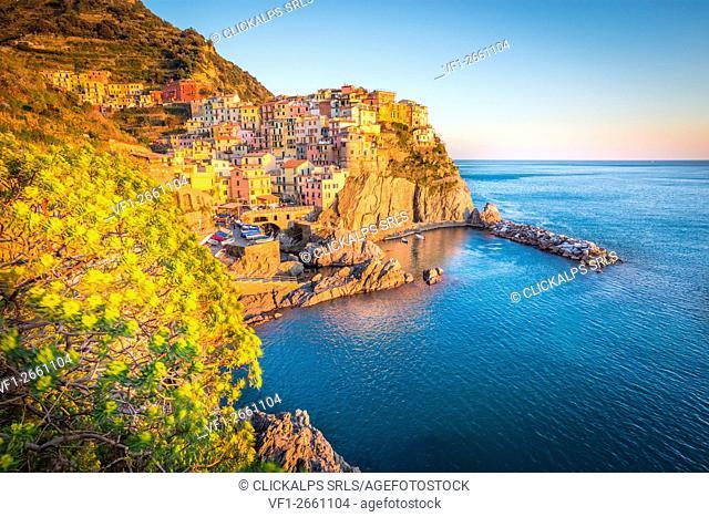 Manarola, Cinque Terre National Park, Liguria, Italy