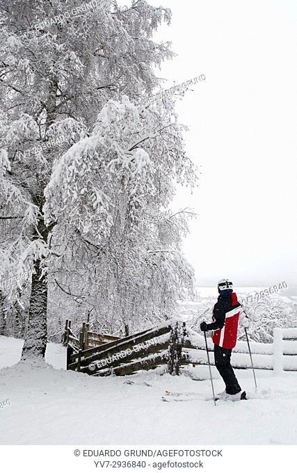 Paisaje de camino a la estación de esquí de Axamer Lizum