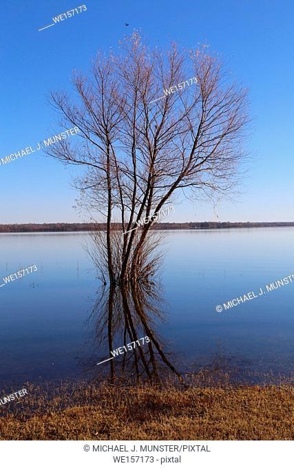 Grand Lake in Oklahoma