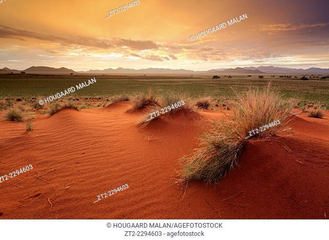Landscape image of a dramatic and colourful sunrise over grassland dunes. Namib Rand, Namibia