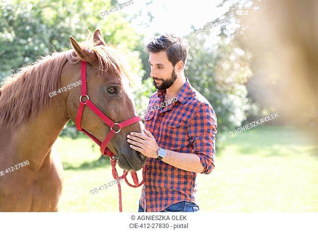 Man petting horse muzzle