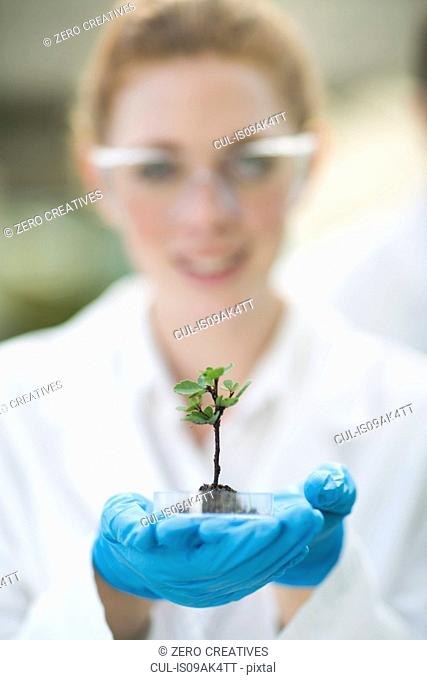 Portrait of female scientist holding up plant sample in poly tunnel