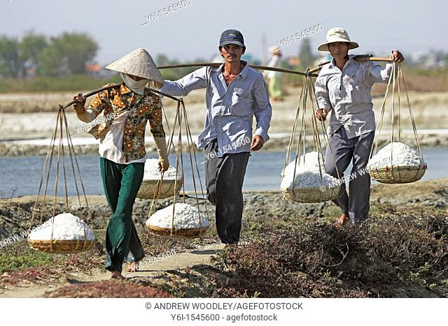 Woman in conical hat and two men carry wicker pannier baskets of salt along dykes between salt ponds Vietnam