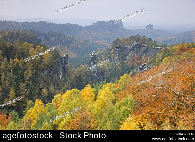 View from Carolafelsen to the Großer Dom / Grossen Dom, Elbe Sandstone Mountains, Saxonian Switzerland NP, Saxony, Germany
