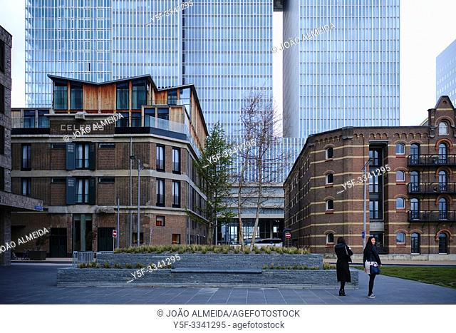 The modern archichitecture of the city of Rotterdam