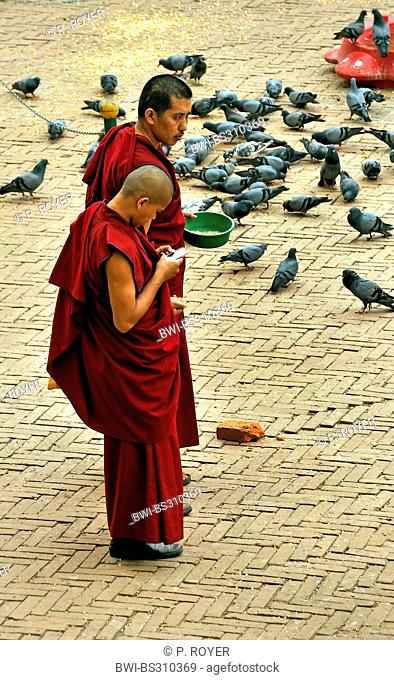 two young monks, one feeding pigeons, one occupied with his mobile, at the stupa of Bouddhanath, one of the holiest Buddhist sites of the country, Nepal