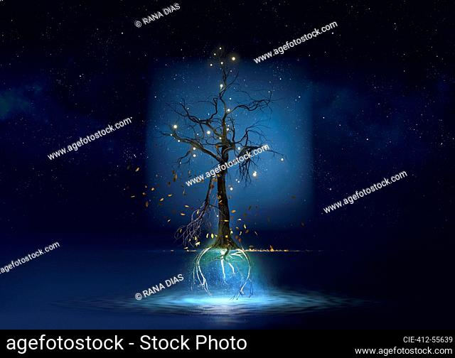 Mysterious illuminated floating tree above water