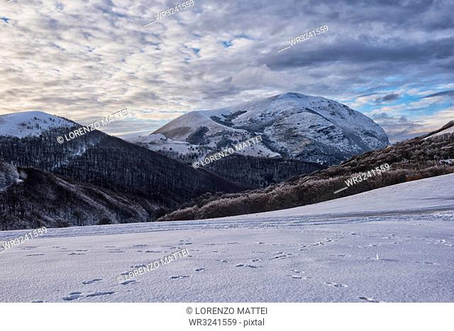 Sunset on Monte Cucco mountain in winter, Apennines, Umbria, Italy, Europe