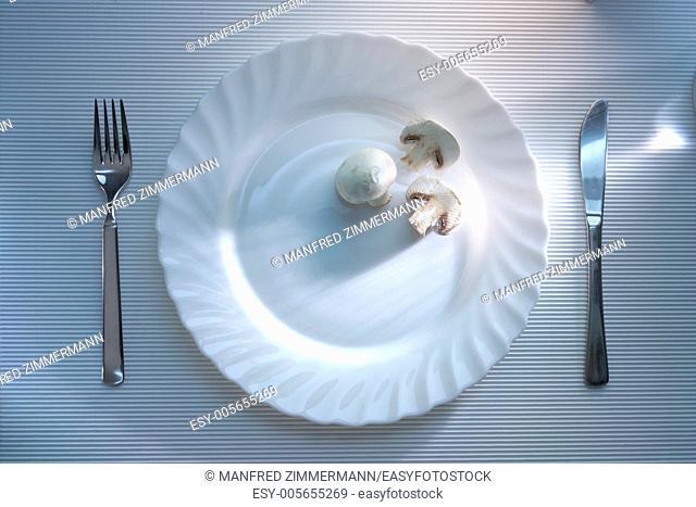 Aesthetically minimally covered dish