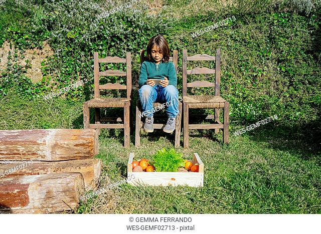 Boy sitting in garden with vegetable box, playing games on his smartphone