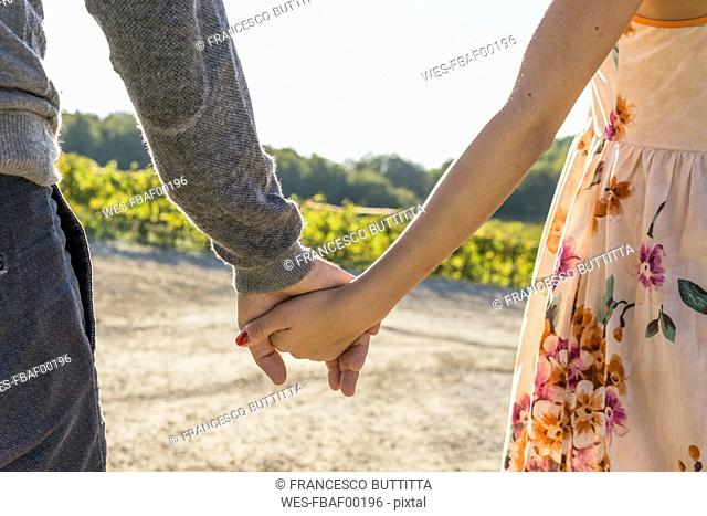 Italy, Tuscany, Siena, close-up of couple hand in hand in a vineyard
