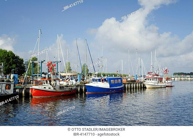 Fishing boats in the harbour, Thiessow, Rügen, Baltic Sea, Mecklenburg-Western Pomerania, Germany