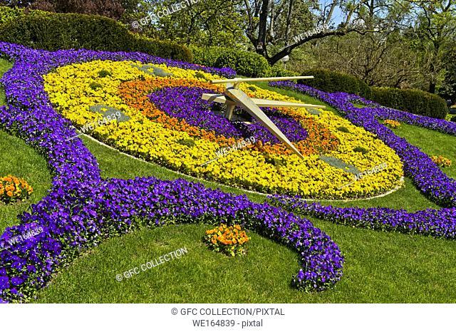 Flower Jardin Anglais Geneva Stock Photos And Images Age Fotostock