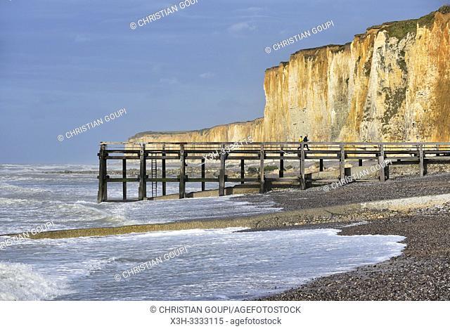 estacade (ponton en bois), Veules-les-Roses, departement de Seine-Maritime, region Normandie, France/wooden pier, Veules-les-Roses, Vaucottes hanging valley