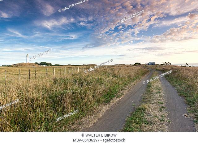 New Zealand, North Island, New Plymouth-area, Pungarehu, Cape Egmont, coastal road, dusk