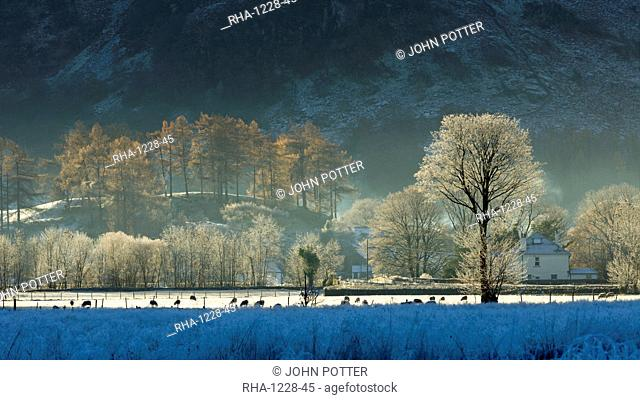 Hoar frost over Stonethwaite village in Borrowdale, Lake District National Park, Cumbria, England, United Kingdom, Europe