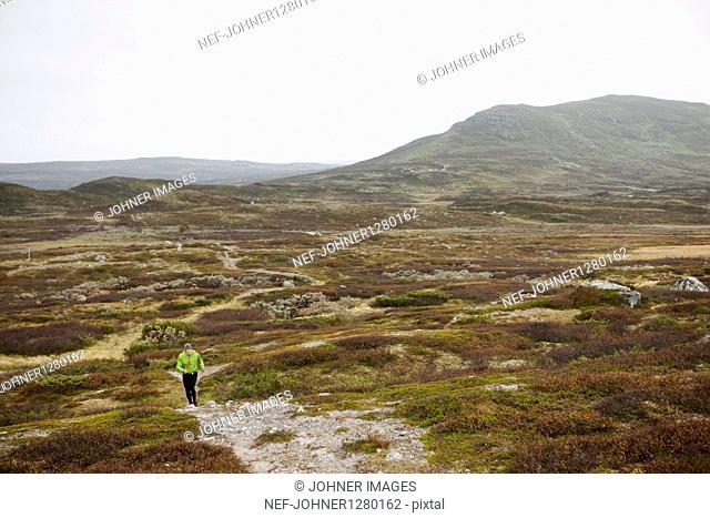 Man cross-country running in wilderness