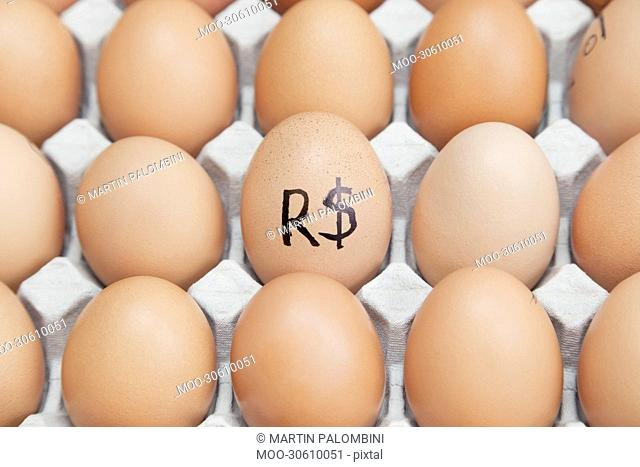 Brazilian currency sign on egg surrounded by plain brown eggs in carton