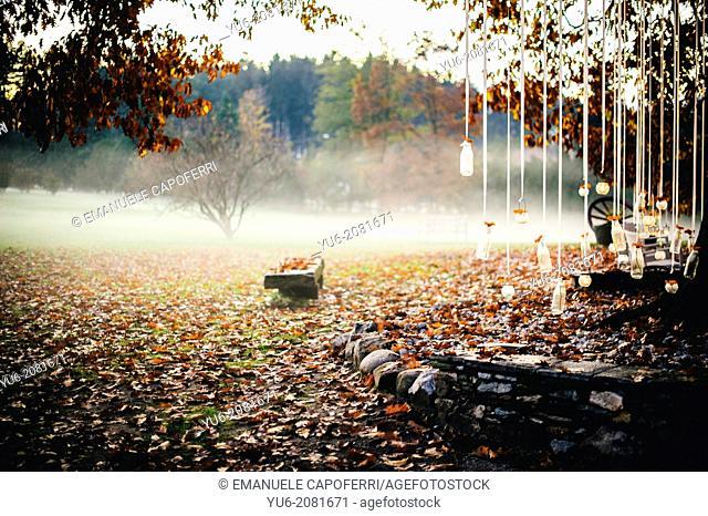 Autumn garden in northern Italy