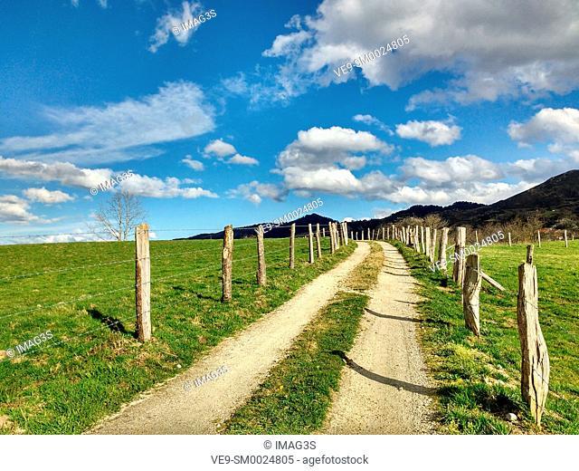 Rural landscape near Nava village, Asturias, Spain