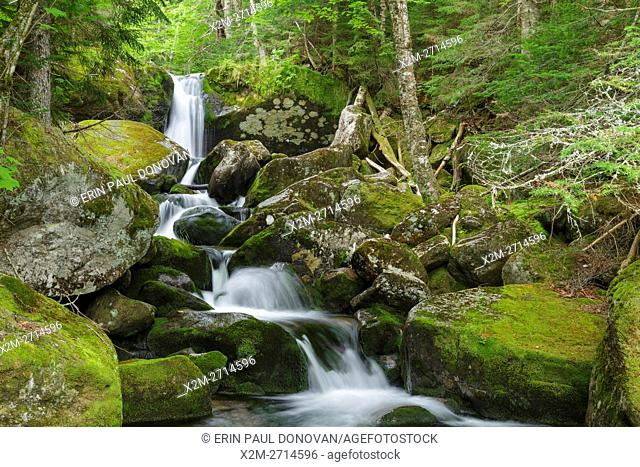 Cascade #7 on Cold Brook in Low and Burbank's Grant, New Hampshire during the summer months. The 1908 map of the Northern Peaks of the White Mountains by Louis...