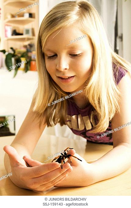 girl with Mexican Red-kneed Tarantula / Brachypelma smithi