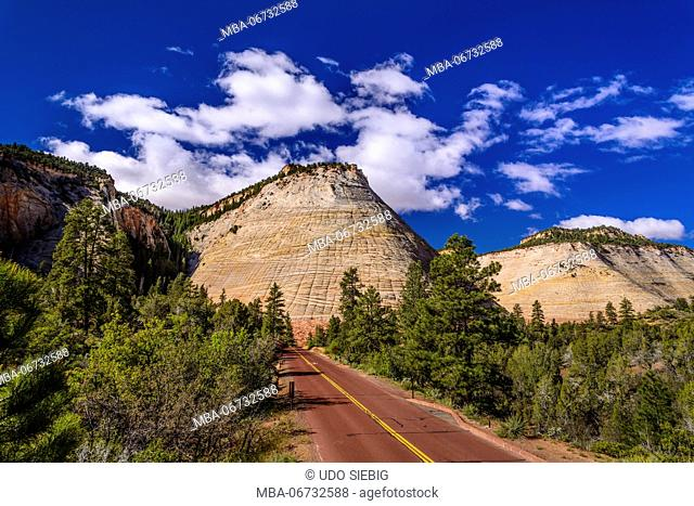 The USA, Utah, Washington county, Springdale, Zion National Park, part of town, Zion - Mount Carmel Highway, Checkerboard Mesa